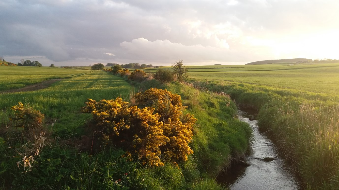 A stream runs through farmland: Brexit and Land values photograph by Deb Roberts